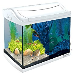 aquarium online shop günstig